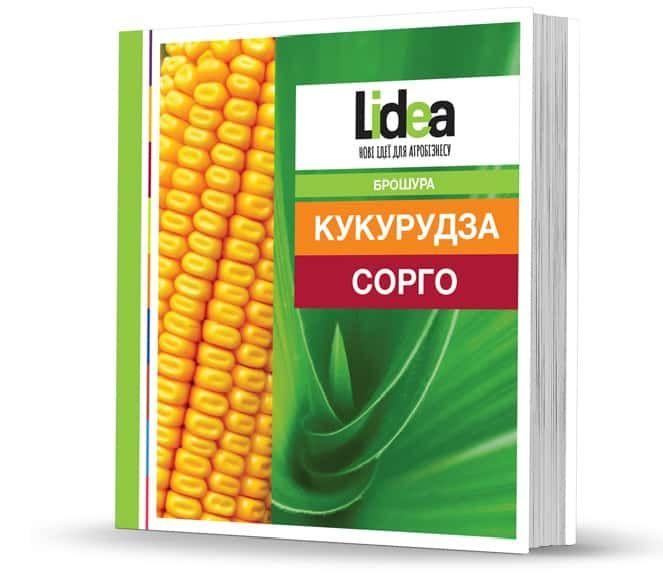 Нова брошура гібридів кукурудзи та сорго